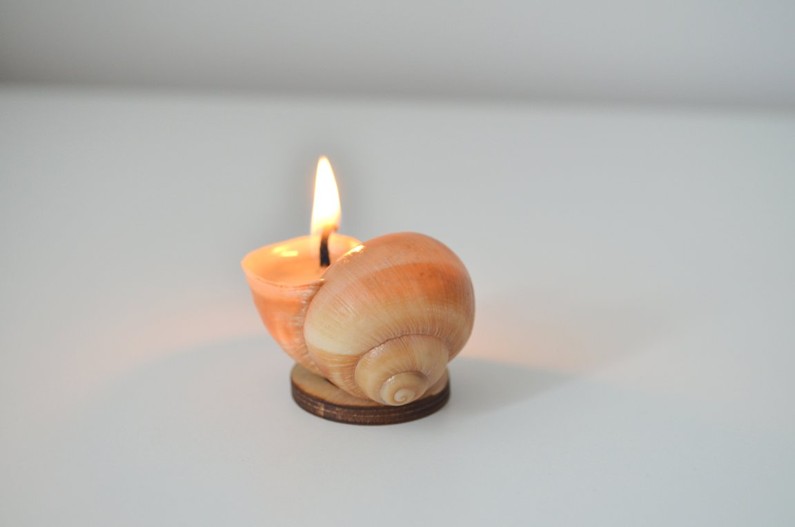 SNAILY CANDLE original